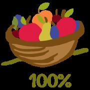 100% ovocne pyre