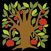 Chytre ovoce - O nas
