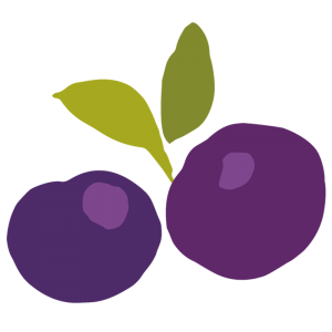 Chytre ovoce - ovoce - boruvka