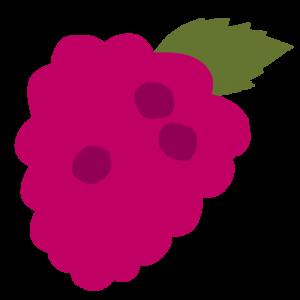 Chytre ovoce - ovoce - malina