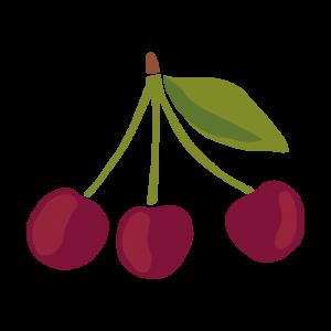 Chytre ovoce - ovoce - visen