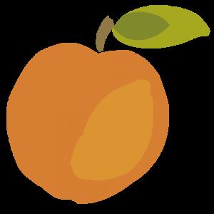 Chytre ovoce - ovoce - merunka